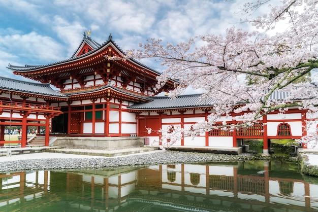 Byodo-in temple a uji, kyoto, giappone durante la primavera. fiore di ciliegio a kyoto, in giappone. Foto Premium