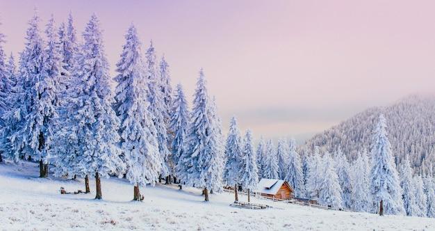 Cabina in montagna in inverno Foto Premium