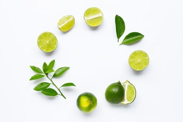 Calce fresche con foglie, composizione cornice arrotondata su sfondo bianco Foto Premium