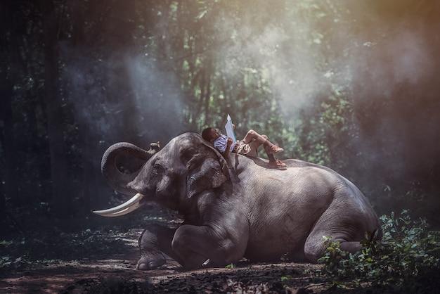 Campagna della tailandia degli studenti, libri di lettura con gli elefanti, surin, tailandia. Foto Premium
