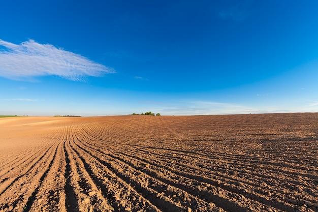 Campo agricolo in autunno. Foto Premium