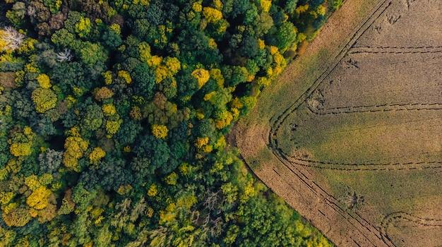 Campo e foresta panoramici aerei della campagna del fuco panoramico di autunno Foto Premium