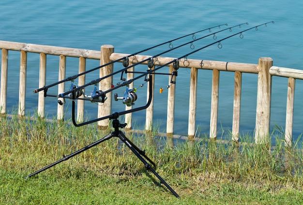Canna da pesca sul lago Foto Premium