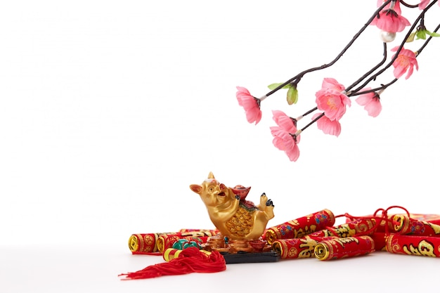 Capodanno cinese 2019 maiale con ciliegio Foto Premium