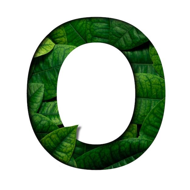 Carattere di foglie o fatto di foglie vere e vere con forma di carattere di carta preziosa. carattere di foglie. Foto Premium