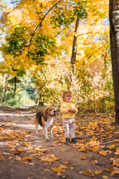 Carina ragazza innocente con il suo cane beagle in piedi alla foresta in autunno Foto Gratuite
