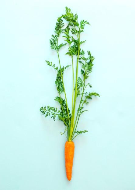 Carota fresca su sfondo blu pastello, vista dall'alto, copia spazio, cibo sano. Foto Premium