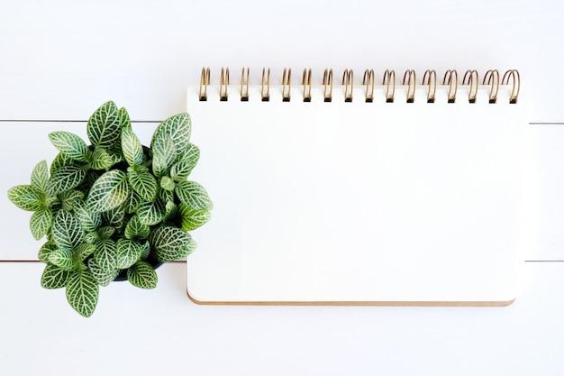 Carta del taccuino in bianco su fondo di legno bianco Foto Premium