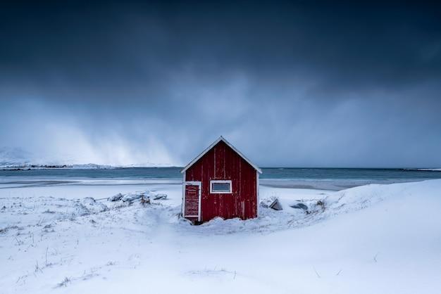 Casa isolata in un vigneto nevoso Foto Gratuite