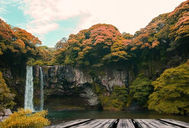 Cascata con alberi intorno Foto Gratuite