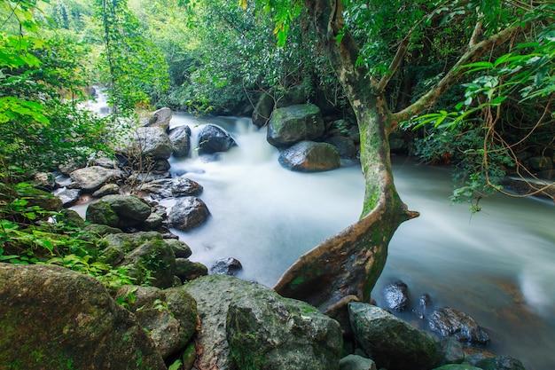 Cascata del forcong di nang alla provincia di nakok di nakorn, tailandia Foto Premium