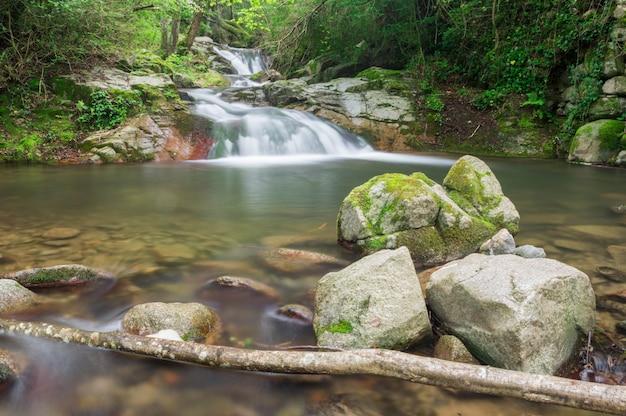 Cascata in una foresta catalana Foto Premium