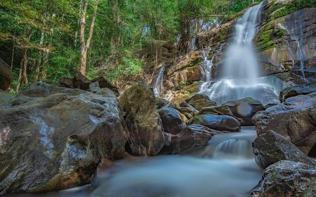 Cascata mozzafiato nella foresta botanica Foto Premium