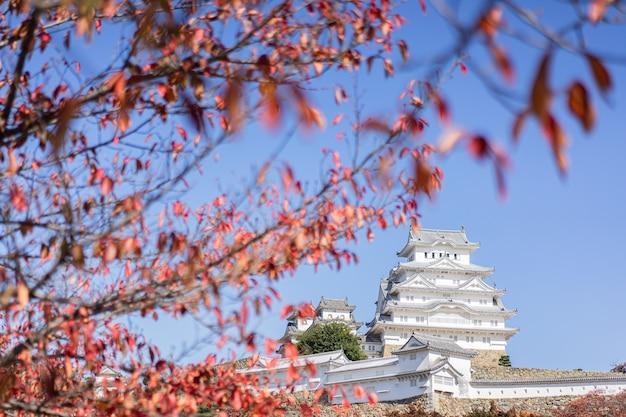 Castello di himeji e foglie di autunno, foglie di acero rosse, giappone Foto Premium