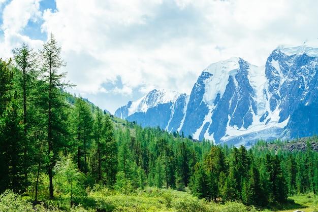 Catena montuosa gigante innevata. cresta rocciosa con neve. incredibile enorme ghiacciaio alla luce del sole. splendide montagne in una giornata di sole. ricca vegetazione di altopiani. pittoresco paesaggio montuoso di natura vivida. Foto Premium