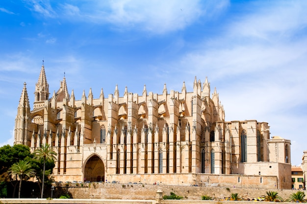 Cattedrale di maiorca la seu da palma de mallorca Foto Premium