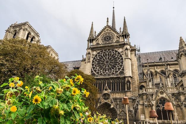 Cattedrale di notre dame de paris, parigi, francia Foto Premium