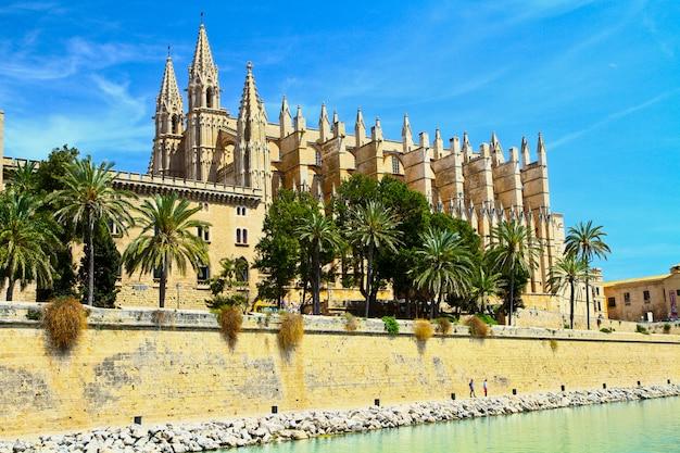 Cattedrale di palma di maiorca Foto Premium
