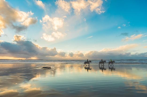 Cavalli che camminano sulla spiaggia al tramonto Foto Premium