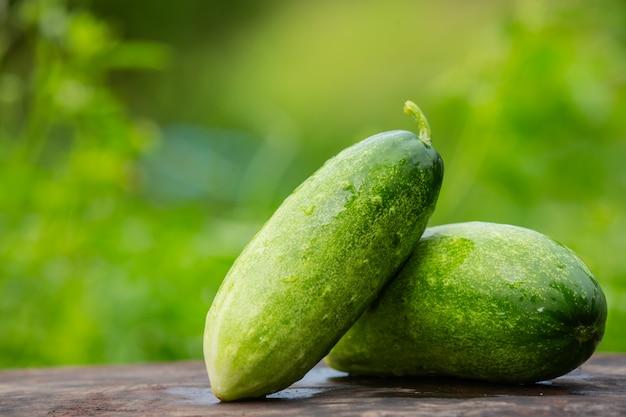 Cetriolo che viene posizionato su un tavolo di legno e ha un colore verde naturale sfocato nella parte posteriore. Foto Gratuite