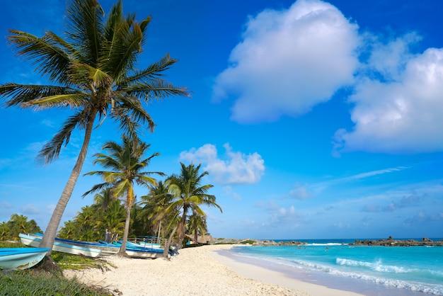 Chen rio beach cozumel island in mexico Foto Premium