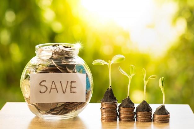 Chiaro barattolo pieno di soldi con la pianta che cresce sulle file della pila della moneta per il concetto di attività bancarie e di finanza. Foto Premium