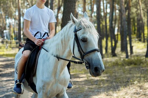 Chiuda in su del cavallo bianco che funziona con il ragazzo adolescente del cavaliere Foto Premium