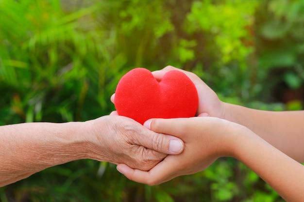 Chiuda su di vecchie e giovani mani che tengono il cuore rosso con il fondo verde della natura Foto Premium