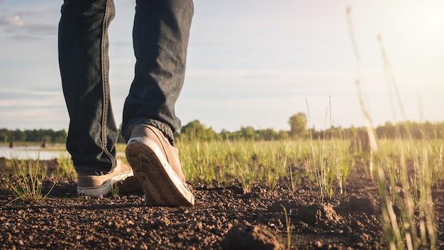 Chiuda sull'immagine dei jeans e della scarpa da tennis degli uomini che camminano alla natura della campagna Foto Premium