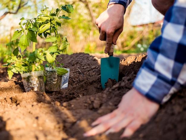 Chiuda sulla piantatura dei semi nel giardino Foto Premium
