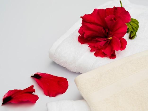 Chiudere i petali con gli asciugamani Foto Gratuite