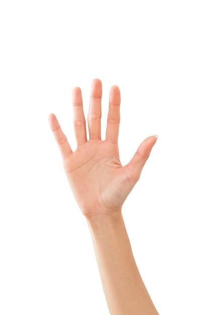 Ciao di firma della mano della donna su bianco Foto Premium