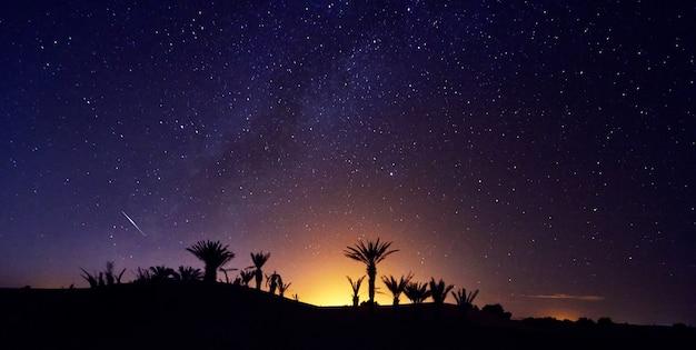 Cielo notturno stellato del deserto del sahara del marocco sopra l'oasi Foto Premium