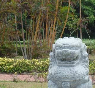 Cinese leone giardino funzione Foto Gratuite