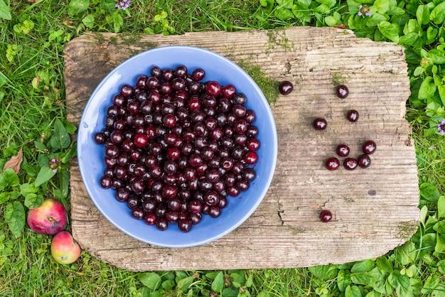 Ciotola di ciliege fresche di giardino Foto Premium