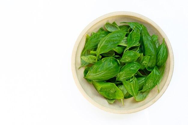 Ciotola di foglie del basilico isolate Foto Premium