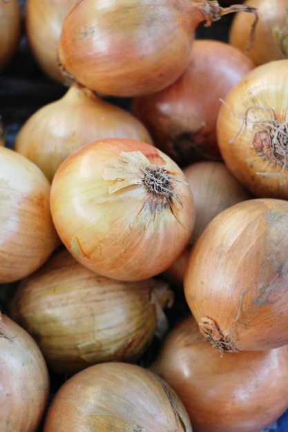 Cipolla fresca per cucinare nel mercato Foto Premium