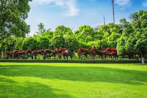 City park Foto Gratuite