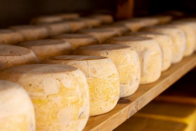 Close-up pezzi di formaggio stagionato Foto Gratuite