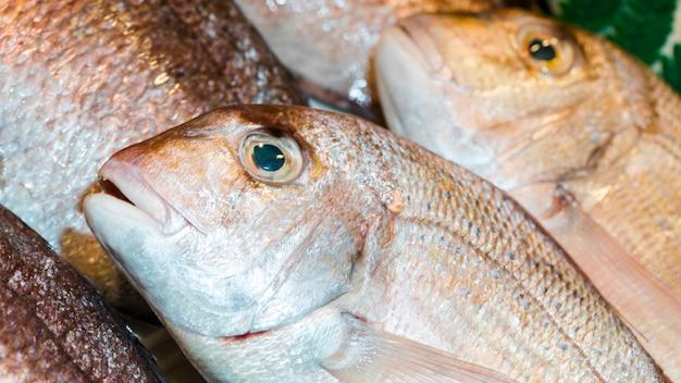 Colpo a macroistruzione della pila dei pesci freschi Foto Gratuite