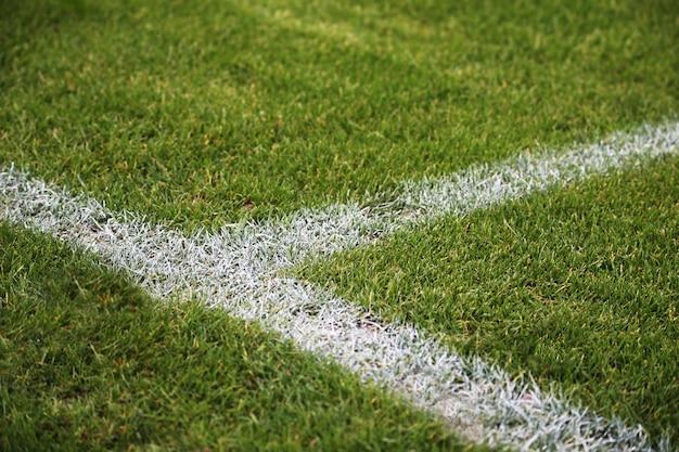 Colpo del primo piano delle linee bianche dipinte su un campo di calcio verde in germania Foto Gratuite