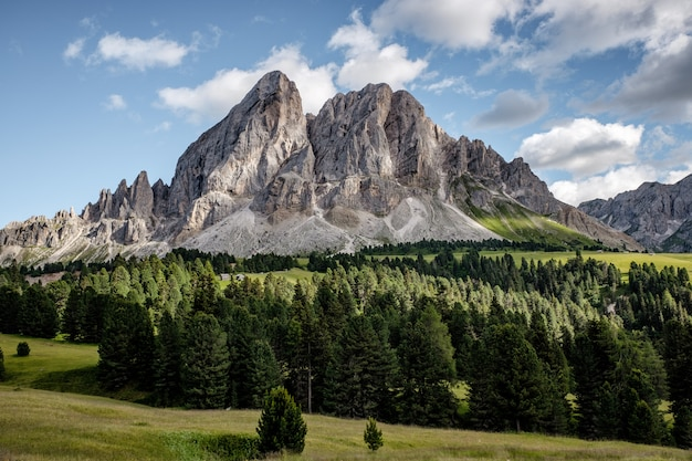 Colpo di paesaggio mozzafiato di una bellissima montagna bianca con foresta di alberi sempreverdi alla sua base Foto Gratuite