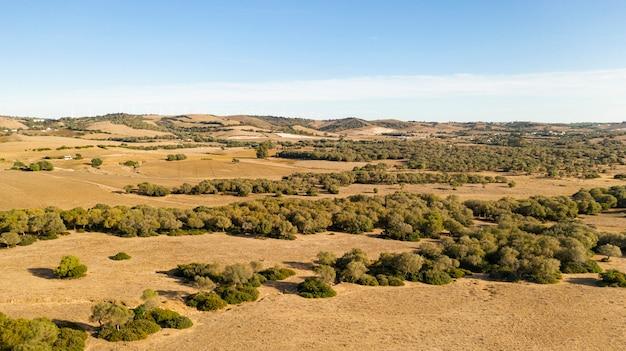 Colpo lungo di bella pianura e foresta presa da drone Foto Gratuite
