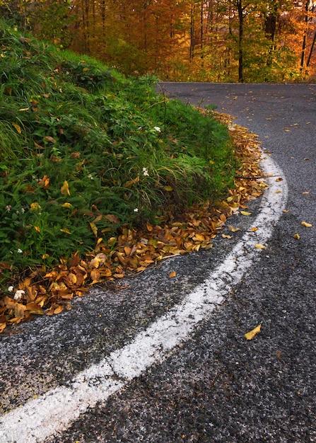 Colpo verticale di una strada tortuosa in montagna medvednica a zagabria, croazia in autunno Foto Gratuite