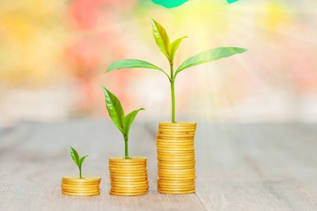 Coltivi le piccole piante con le monete impilate con il fondo del bokeh. Foto Premium