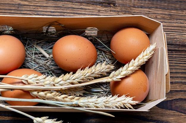 Coltivi le uova marroni con paglia nella fine di legno del fondo della scatola di corteccia di betulla su Foto Premium