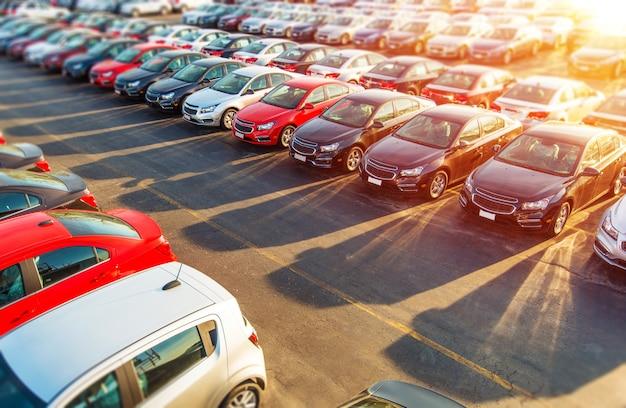 Commerciante nuovi automobili Foto Gratuite