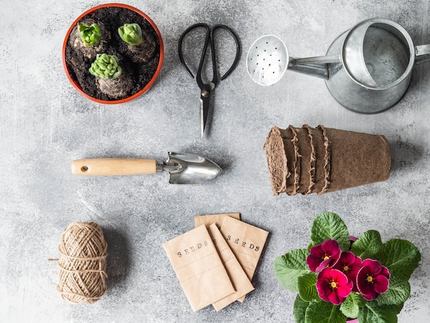 Composizione da giardino piatta con fiori primaverili - giacinti, primula, semi in confezione e attrezzi da giardino Foto Premium
