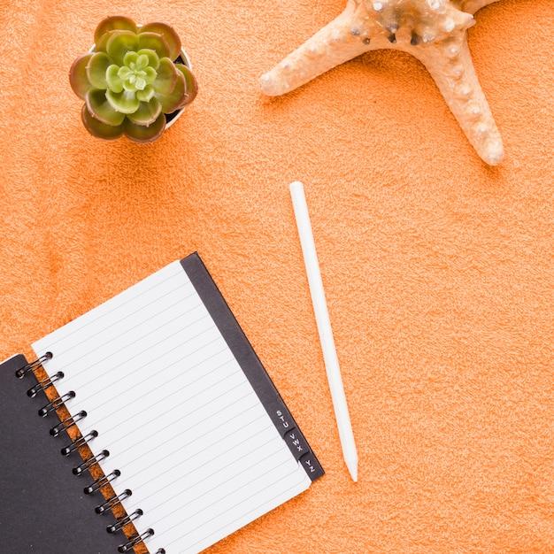 Composizione della pianta e delle stelle marine della matita del taccuino Foto Gratuite