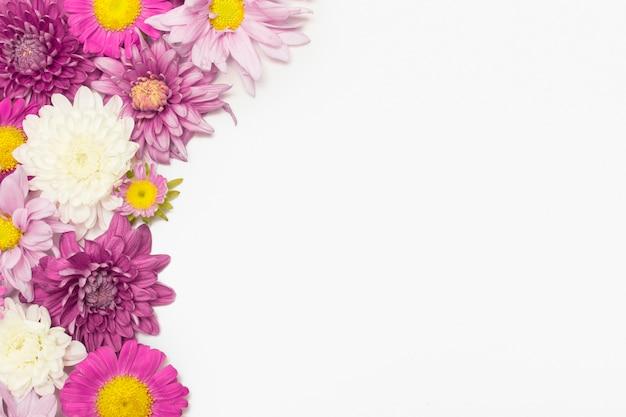 Composizione di fiori colorati Foto Gratuite